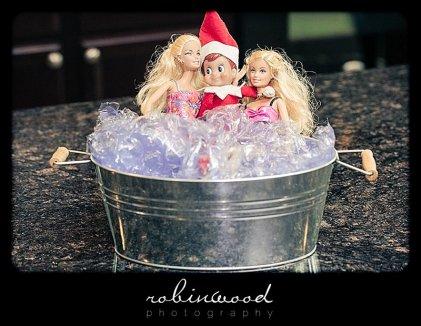 elf-shelf-robinwood_0151