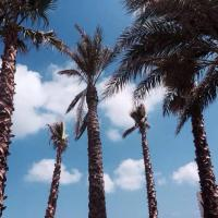 Holiday Ideas UK and Overseas #Reviews