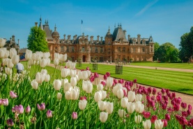 Waddesdon.Manor.original.18986