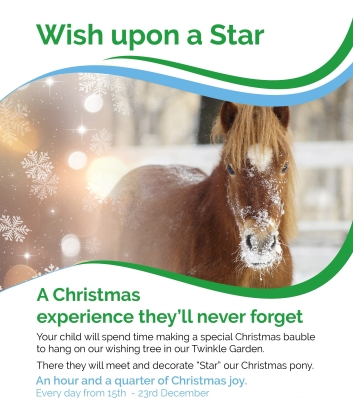 Xmas Wishes with Ponies Flyer [1]